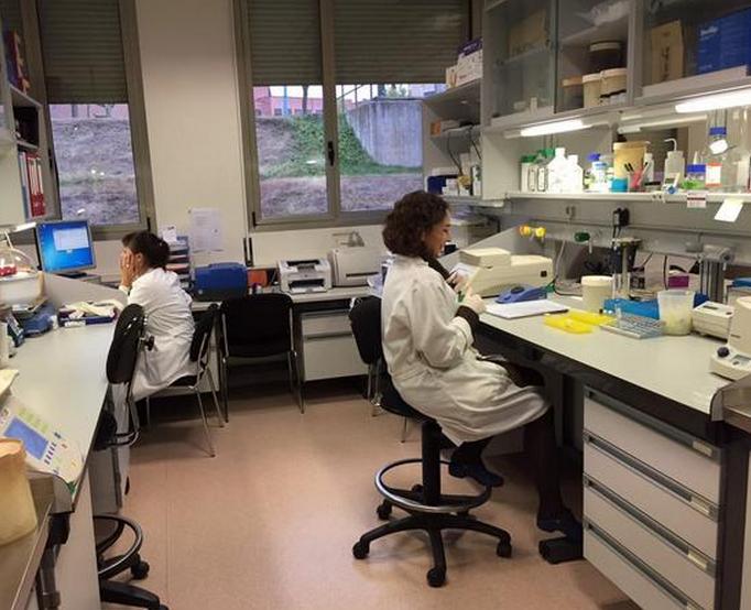 Centro-de-Investigacion-de-Cancer-de-Univ-Salamanca1