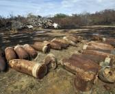Crean comisión para velar por la limpieza de la Isla Nena