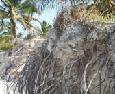 Profesores de la UPR estudian la erosión en playas de Punta Cana