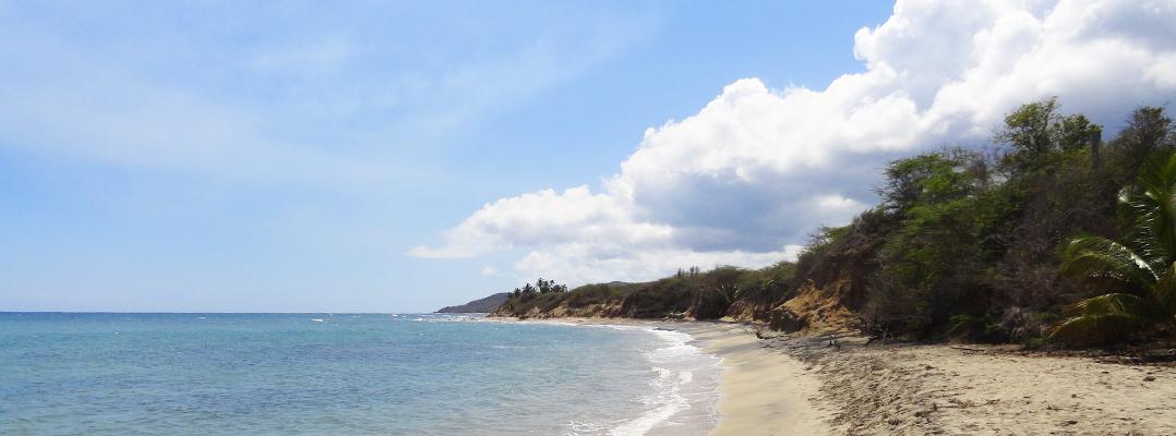 Estudiantes de arquitectura de UPR y Cornell diseñan propuesta turística en Vieques