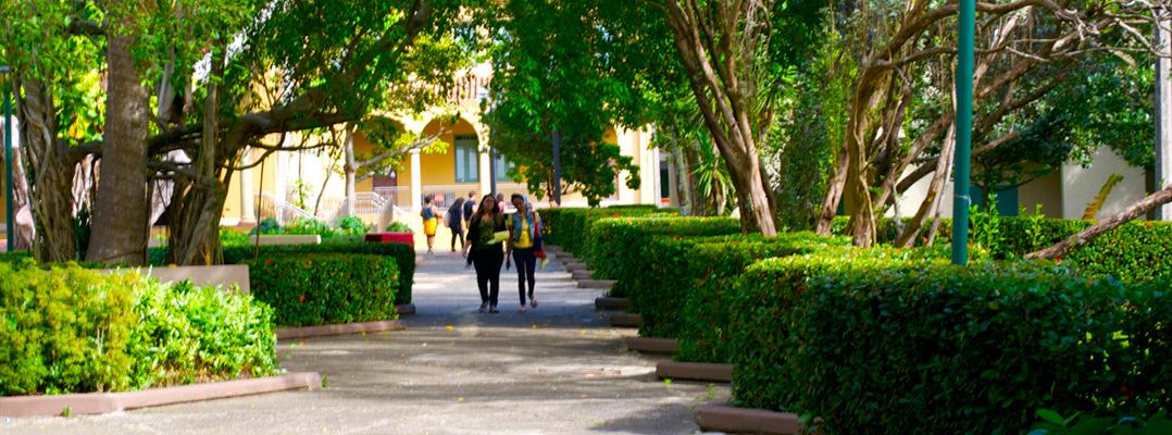 Escuela graduada de Humanidades: la voz administrativa