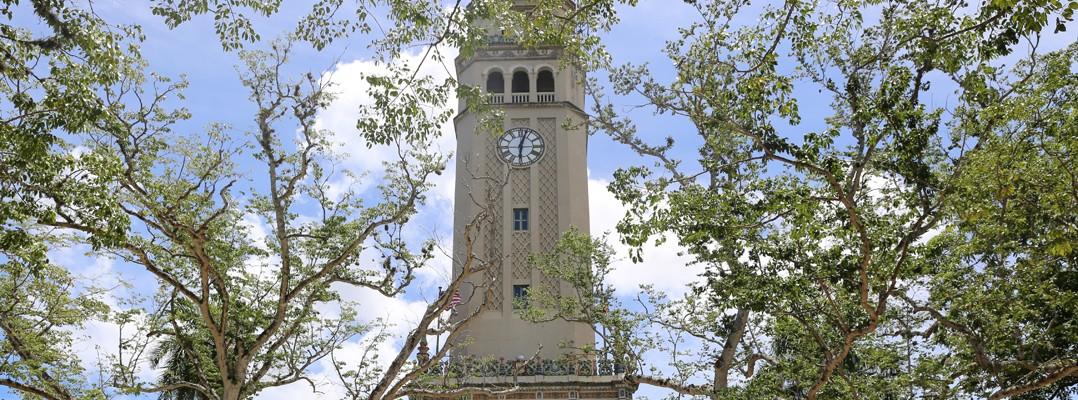 Foto de la Torre