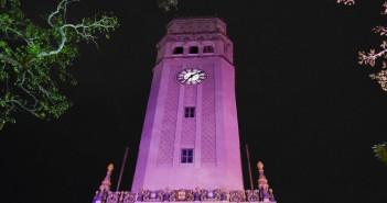 torre rosada