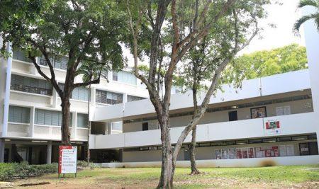 Nace en la UPR de Río Piedras iniciativa que apuntala el desarrollo profesional de estudiantes graduados de Consejería en Rehabilitación
