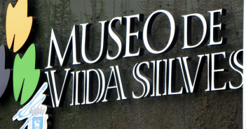 museo arte y vida silvestre