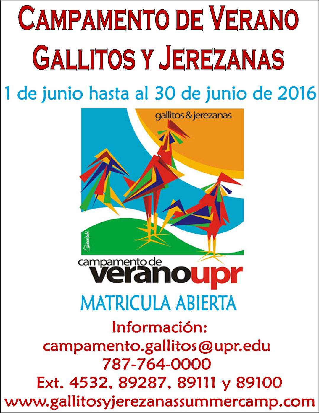 Campamento Gallitos y Jerezanas 2016