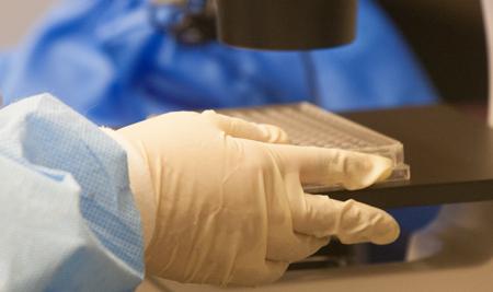 NIH otorga importante subvención a estudio relacionado con el cáncer de hueso