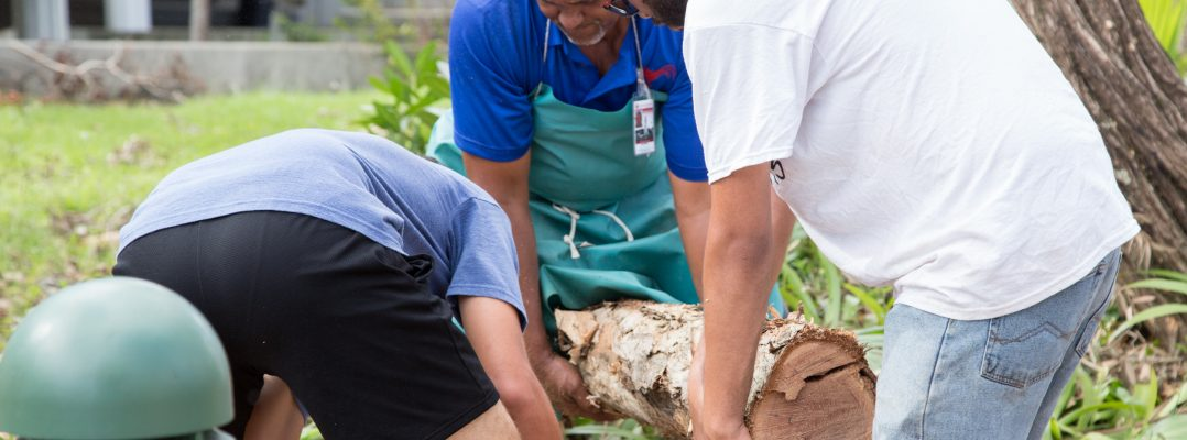 Exitosa colaboración de empleados y voluntarios en labores de recuperación del Recinto de Río Piedras de la UPR
