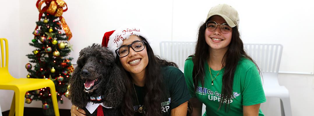Universitarios liberan el estrés con canes de terapia
