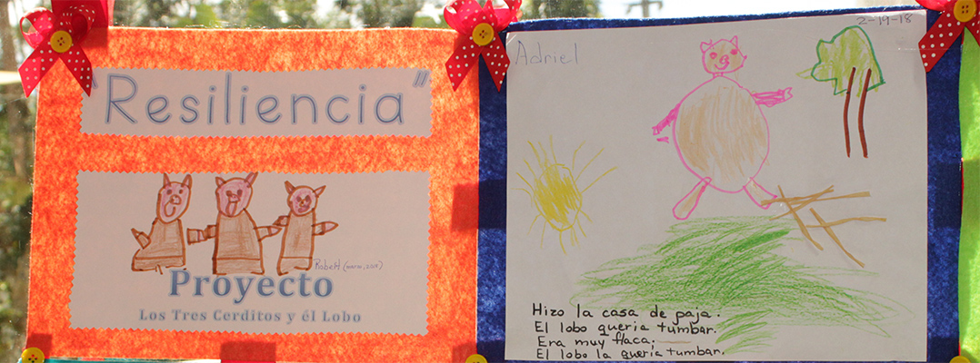 Proyecto ALCANZA fomenta la resiliencia para subsanar situaciones emocionales luego de los huracanes