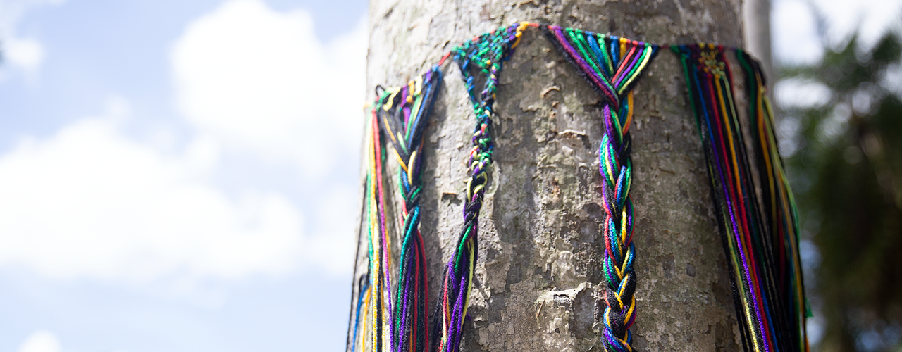 yarn-bombing-tree