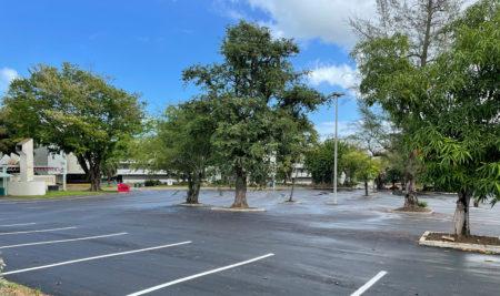 Reasfaltado y mejoras geométricas al estacionamiento aledaño a la Facultad de Ciencias Sociales